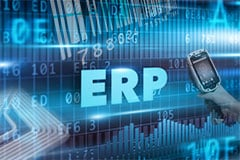 Mobilize your ERP data